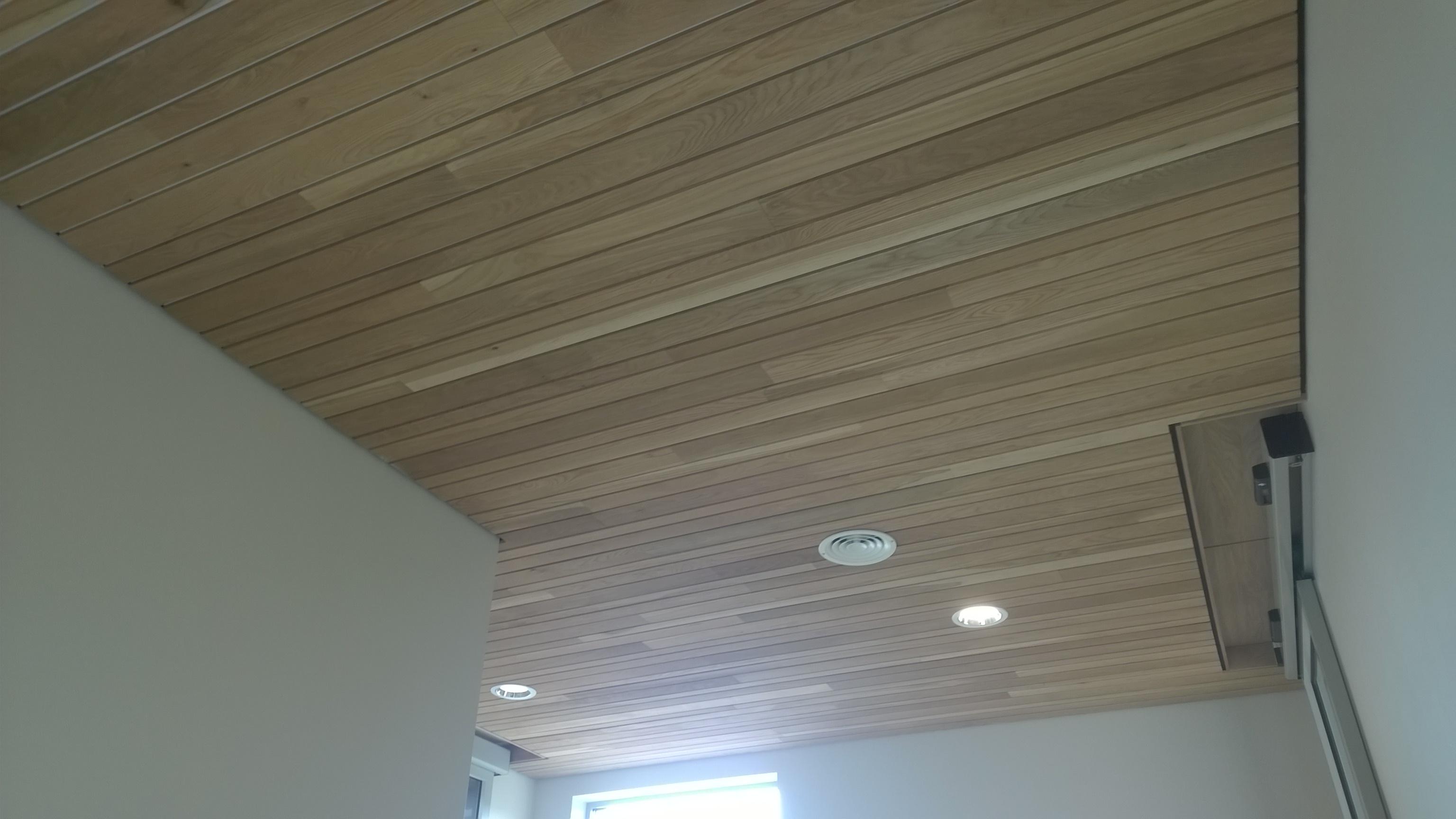 houten plafonds alm